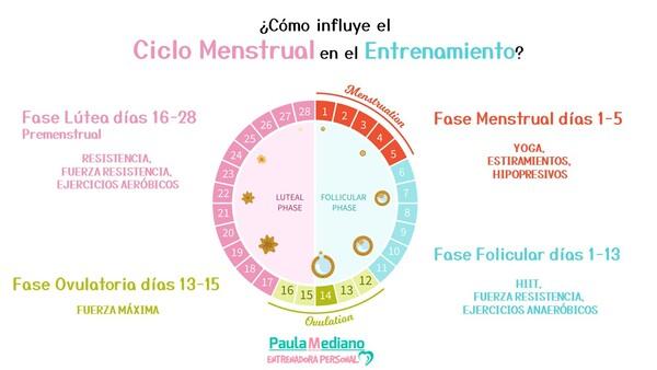 Entrenamiento y ciclo menstrual